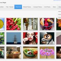 S responzivní fotogalerií i video galerií si poradí plugin Unite Gallery